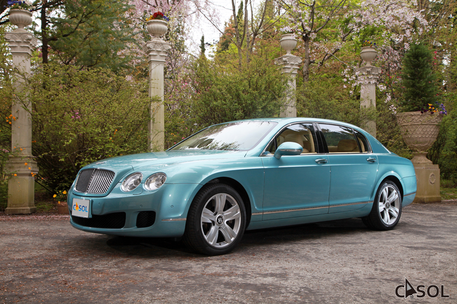 15_flyingspur1